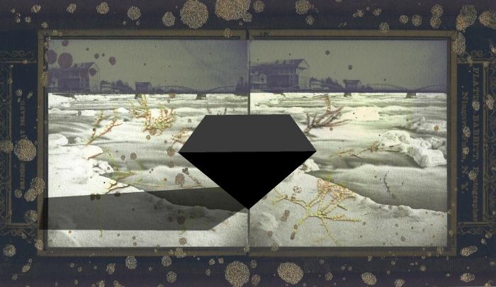 coy-calcified-algae-field